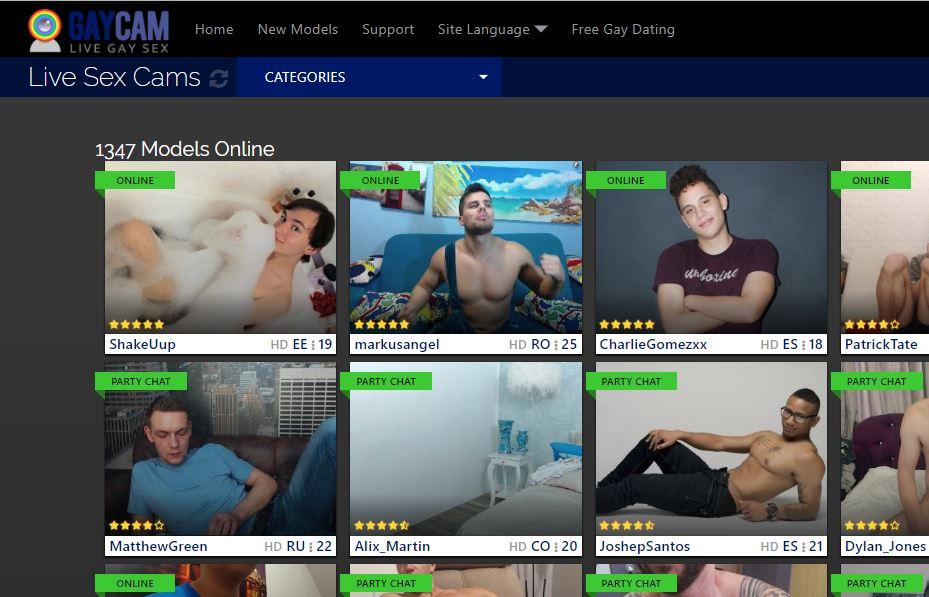 gaycam reviews