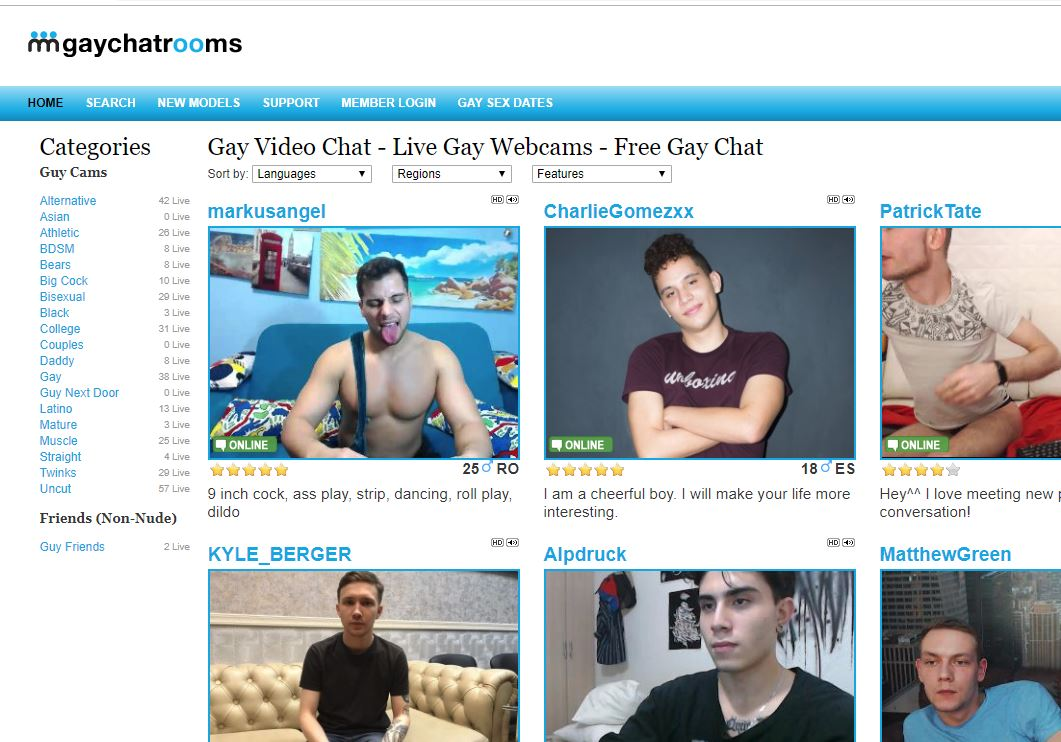gaychatrooms reviews