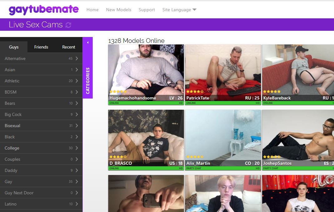 gaytubemate reviews